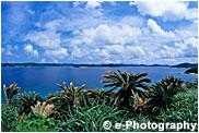東シナ海から笠利湾
