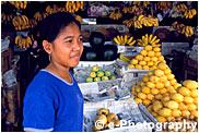 フルーツマーケット