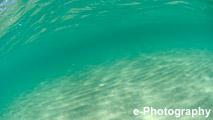 海 波 水 光 波紋