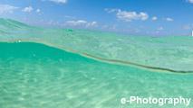 海 波 水 光 半水面