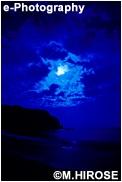 南伊豆のビーチ 青 雲