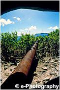 母島の大砲