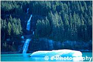 森、滝と氷