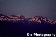 針葉樹の森と雪山夕焼け