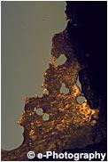 夕暮れ、金色に染まる浮氷