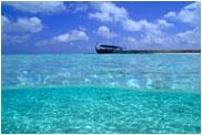 クリスタルウォーター モルジブの海