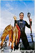 スピアガン 魚突き